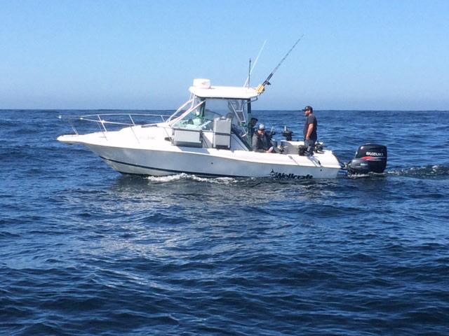 White fishing boat floating in ocean